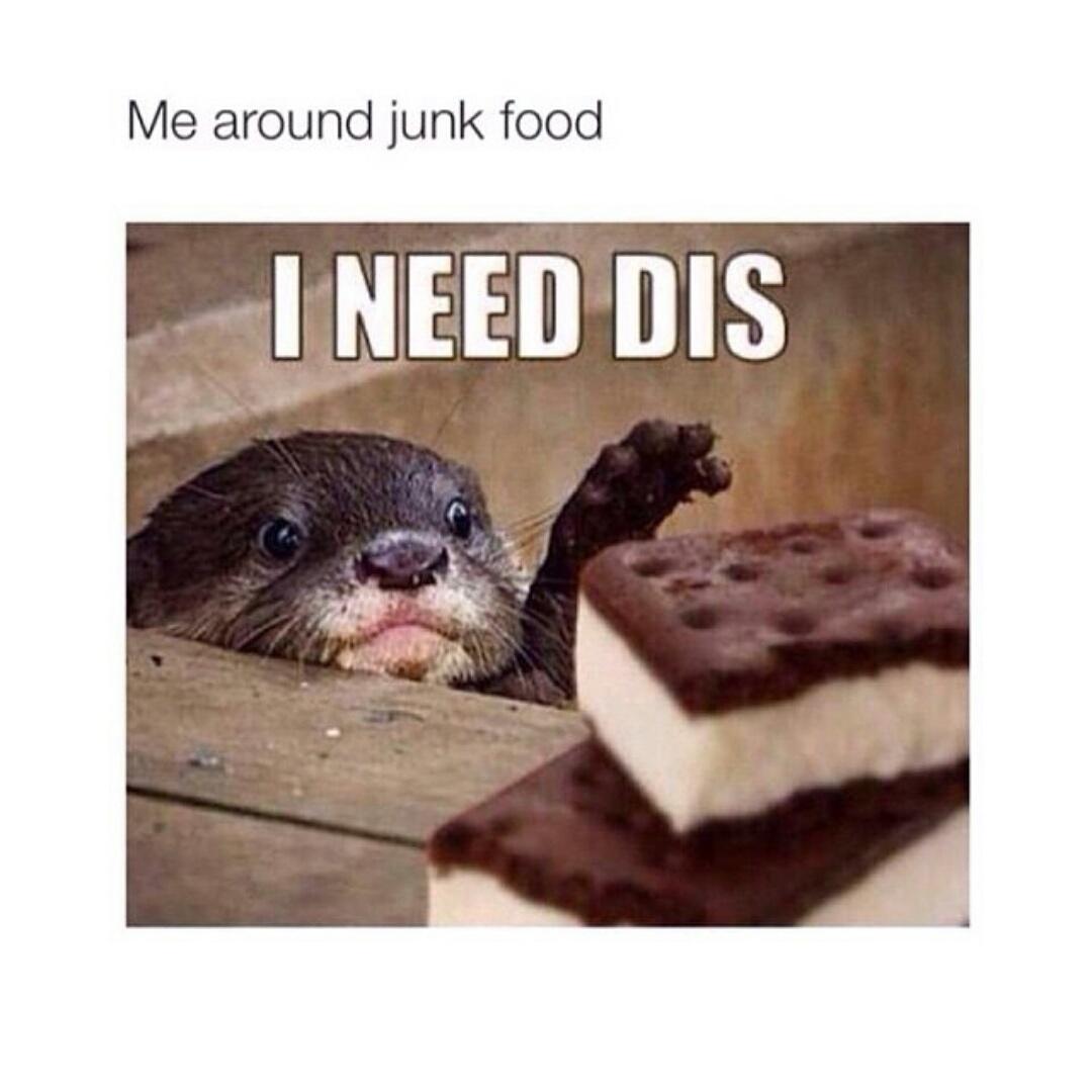 I need dis
